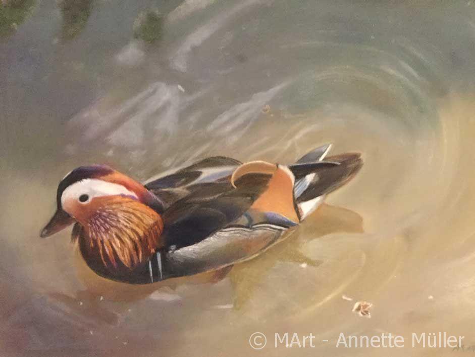 Pastellbild Mandarin duck - Mandarinente
