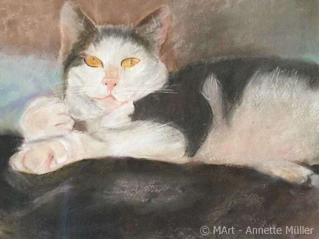 Pastellbild Katze Mizzy