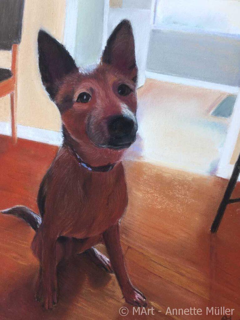 Pastellbild Yukis dog - Yukis Hund