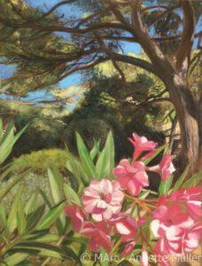 Pastell Oleander: Pink bloom - Oleander: Rosa Blüte